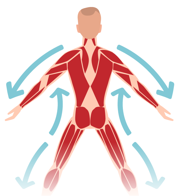 Sports Massage muscle activation